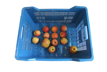 Obstkiste Plus 2